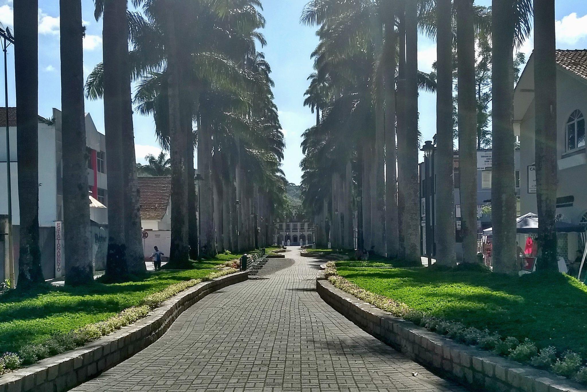 Rua Palmeiras em Joinville